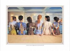 New Back Catalogue Campaign Poster Pink Floyd Print