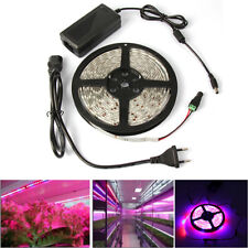 5M Waterproof 5050 LED Strip Plant Grow Light for Aquarium Greenhouse Hydroponic