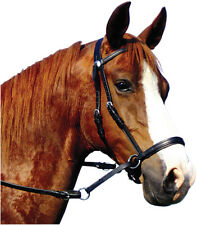 Dr Cook Bitless Bridle Leather Bitless Horse Bridle