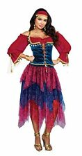 Dreamgirl Gypsy Crystal Ball Fortune Teller Adult Womens Halloween Costume 10669