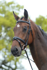 Kincade Flash Bridle with Laced Reins