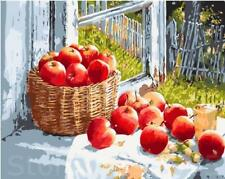 """16X20"""" Paint By Number DIY Acrylic Kit Oil Painting Lot of Apples Canvas 2015"""