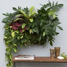 Living Wall Planter Vertical Garden Hanging Wall Planter by Woolly Pocket