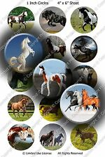 Pre-Cut 1 Inch Circle - God's Creatures Bottle Cap Images of Your Choice