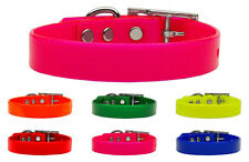 Tropical Jelly Coated Nylon Waterproof and Dirt Resistant Pet Dog Collar