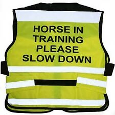 Equisafety Horse Training Air Road Safety Fluorescent Waistcoat