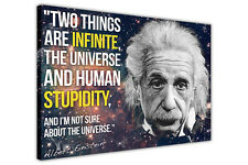 LARGE CANVAS PRINTS ALBERT EINSTEIN INFINITE STUPIDITY QUOTE / PICTURE / PRINT