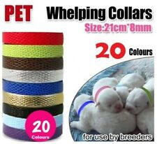 2 pack Tiny Collar Kittens, Puppies, Cats, Dogs, Ferrets, Rabbits, Possums Whelp
