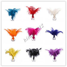 Wholesale 10/50/100pcs High Quality Natural OSTRICH FEATHERS 10-12'inch/25-30cm