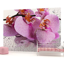 Orchid Flowers Droplets Photo Wallpaper Wall Mural (CN-184P)