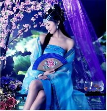 Chinese Style Ancient Times Womens Long Dress Stage Performing Fairy Clothes