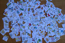 200+ Food & Drink pics for Visual Communication/PECS/ABA/SEN/Story Boards/Autism