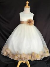 Ivory Flower Girl Bridesmaid Champagne Rose Petal Dress ALL SIZE Wedding Holiday