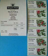 The B.P.M.A - British Flora 3- Winter Greenery -Various Options