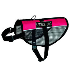 Mesh Dog Vest Reflective Label Patches IN TRAINING THERAPY SERVICE DOG Harness
