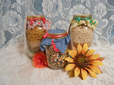 NEW Homemade Muffin Mix In A Quart Jar 12+ Varieties You Choose Flavor Gift