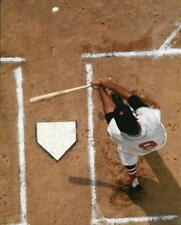 MLB Baseball Boston Red Sox Ted Williams Photo Picture