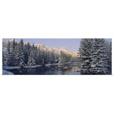 Poster Print Wall Art entitled Trees covered with snow, Policemans Creek,
