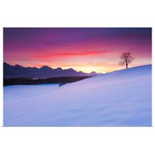Poster Print Wall Art entitled Oak tree and snow-covered landscape in the Allgau