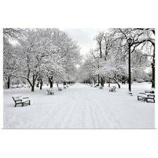Poster Print Wall Art entitled Snow covered benches and trees in Washington Park