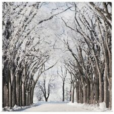 Poster Print Wall Art entitled A Road And Trees Covered In Snow In Winter,