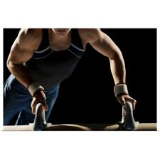 Poster Print Wall Art entitled Gymnast on pommel horse