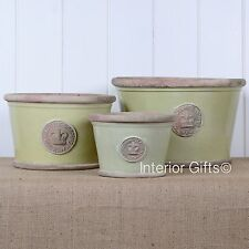 KEW ROYAL BOTANIC GARDENS LOW PLANTER GRAPE GREEN PLANT POT flower botanical