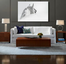 White Horse Big Size Modern Abstract Wall Art Oil Painting on Canvas Framed