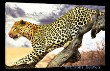 Oil Painting HD Print Wall Decor Art On Canvas,Leopard On The Tree  (Unframed)