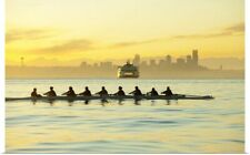 Poster Print Wall Art entitled Team rowing boat in bay