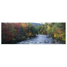 Poster Print Wall Art entitled River flowing through a forest, Swift River,