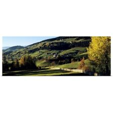 Poster Print Wall Art entitled Trees on a rolling landscape, Tyrol, Dolomites,