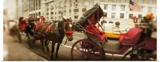 Poster Print Wall Art entitled Horse drawn carriages at the roadside Central