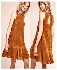 nwt SOLD OUT! Amis Drop Waist Lace Dress by MAEVE Anthropologie Mango SZ: 8 / 10