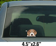 Beagle full body Stickers, Decals