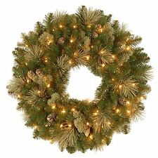 "National Tree Pre-Lit 24"" Carolina Pine Wreath with 10 Flocked Cones wm5 m01"