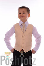 Boys Suits Pageboy Formal Wedding Suit 4pc Champagne Swirl 0-3mths-15yrs