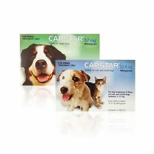 Capstar Tablets Cats Dogs Flea treatment effective, 2 sizes Brand New Free P&P