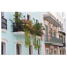 Poster Print Wall Art entitled A balcony garden above the streets of Old San