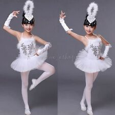 Kids Girl Princess Ballet Leotard Dress Swan Dance Tutu Skirt Dance wear Costume