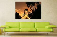 Canvas Poster Wall Art Print Decor Dusk Dawn Tree Silhouette Sunset