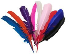 A large stripped hat mount feather Millinery DIY craft feather Various colours