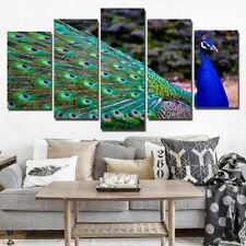 Peacock Bird Blue Green Colorful Canvas Panel Wall Art Picture Print Poster
