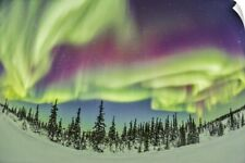 Wall Decal entitled Aurora borealis over Churchill, Manitoba, Canada