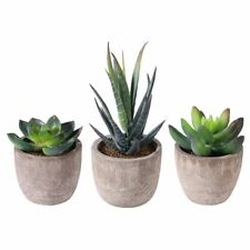 Artificial Succulent Plants Fake Artificial Bonsai with Pots Decorative Ball