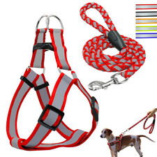 Reflective Nylon Dog Pet Puppy Safty Noctilucent Harness&Leash Step-in SML