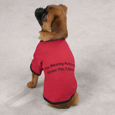Zack & Zoey Nothing Under This Tee Dog T Shirt Dog Clothes