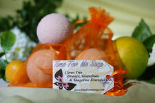 Shea Butter Bath Bombs Therapeutic Grade Essential Oils