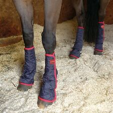Equilibrium Therapy Magnetic Chaps - Horse First Aid/Grooming/Care