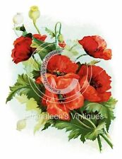 ~Vintage Shabby Victorian Klein Orange Poppies Bouquet Waterslide Decals~FL286
